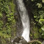 Waterfall at Místico Arenal Hanging Bridges Park