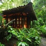 Nicuesa Rainforest EcoLodge Cabin