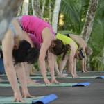 Yoga at Nicuesa Rainforest Eco Lodge